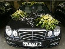 cho thue xe cuoi, cho thuê xe cưới